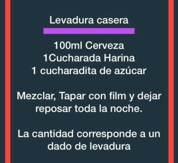 LEVADURA CASERA